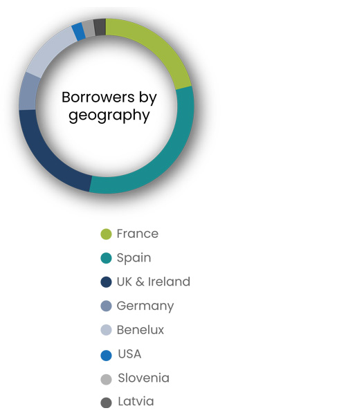 Borrower by geography