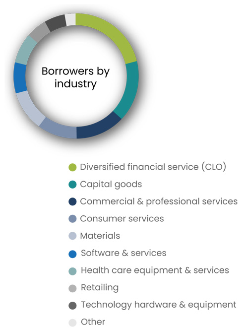 Borrower by industry